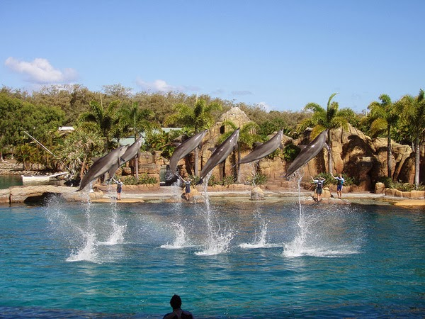 Free holiday ke Gold Coast Australia masuk Sea World