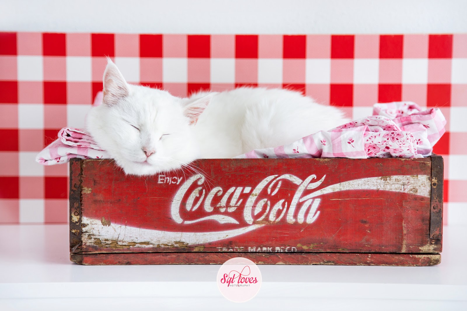Syl loves, Mr.Blue, Coca Cola, Gingham