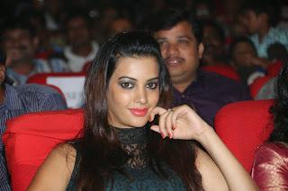 Deeksha Panth cute Telugu Actress at Manam 100 Days Celebration Event