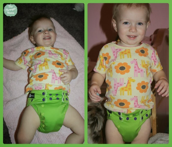 fusion+v2 Giveaway: 10 Funky Fluff cloth diapers ($210+), US & CAN, 12/27 1/10