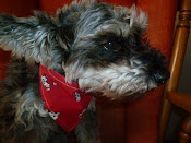 Lillo