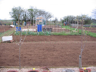 One half of my allotment.