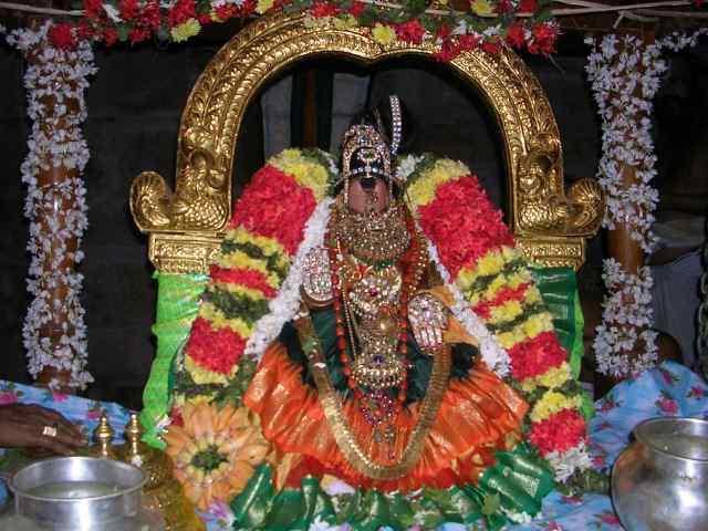 Raganatha Temple (India) Sriranganayakiinunjalfestival