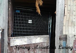 inside the barn animal housing