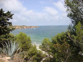 Cap Roig Beach behind trees