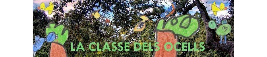 LA CLASSE DELS OCELLS DE MENORCA