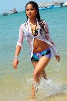 Varsha, hot, cleavage, show, bikini