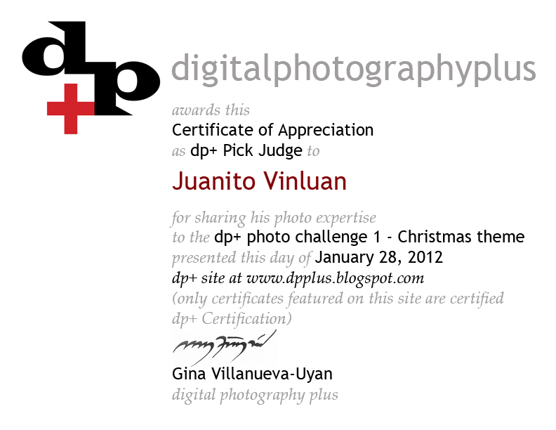 digital photography plus: photo challenge 1 judges certificate of ...