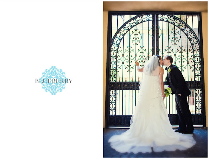 Beautiful gorgeous lafayette park hotel wedding photography bride groom