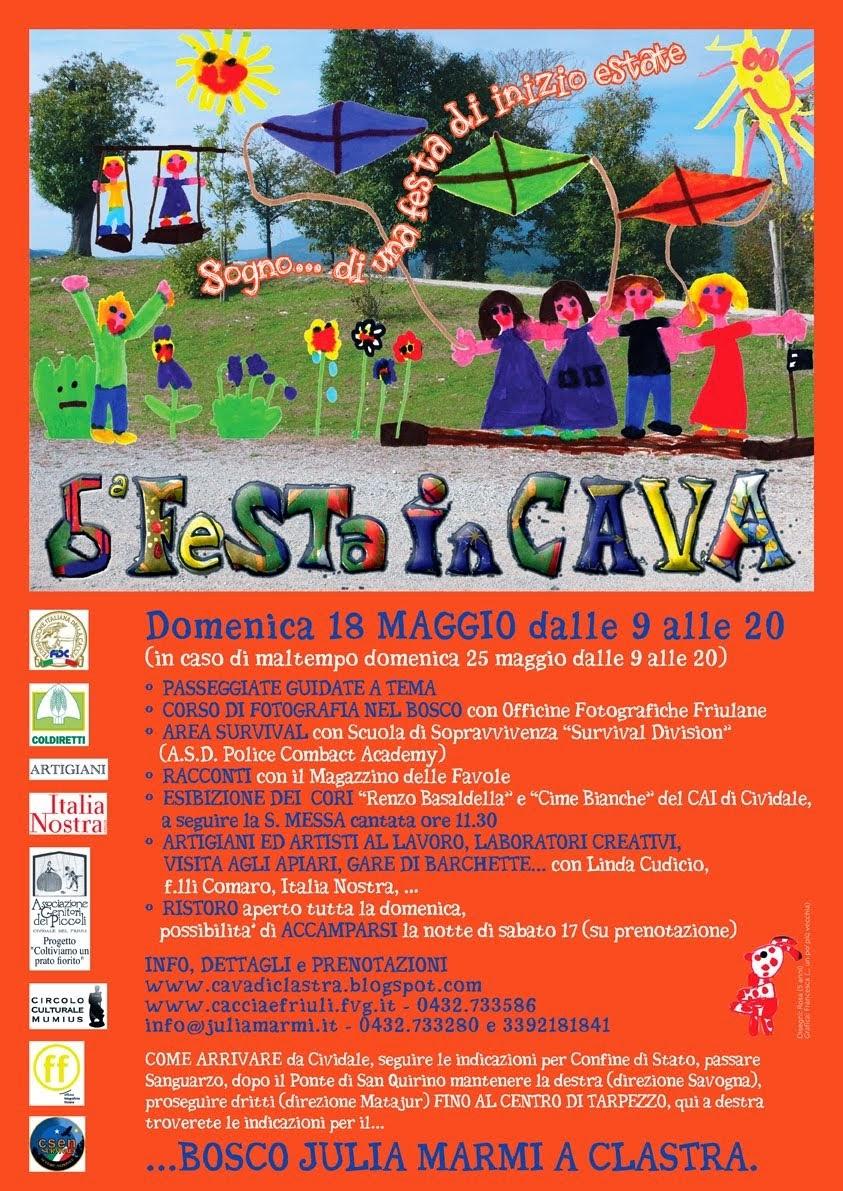 Locandina Festa in Cava 2014