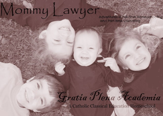 MommyLawyer