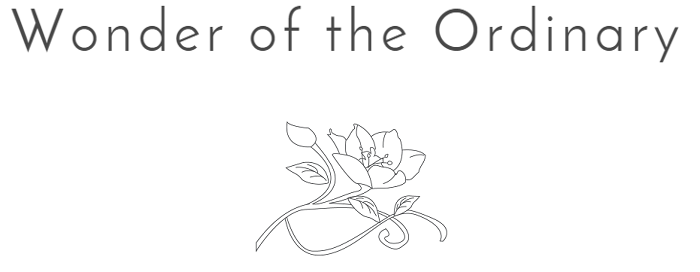 Wonder of the Ordinary