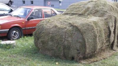 parkir sembarangan rumput