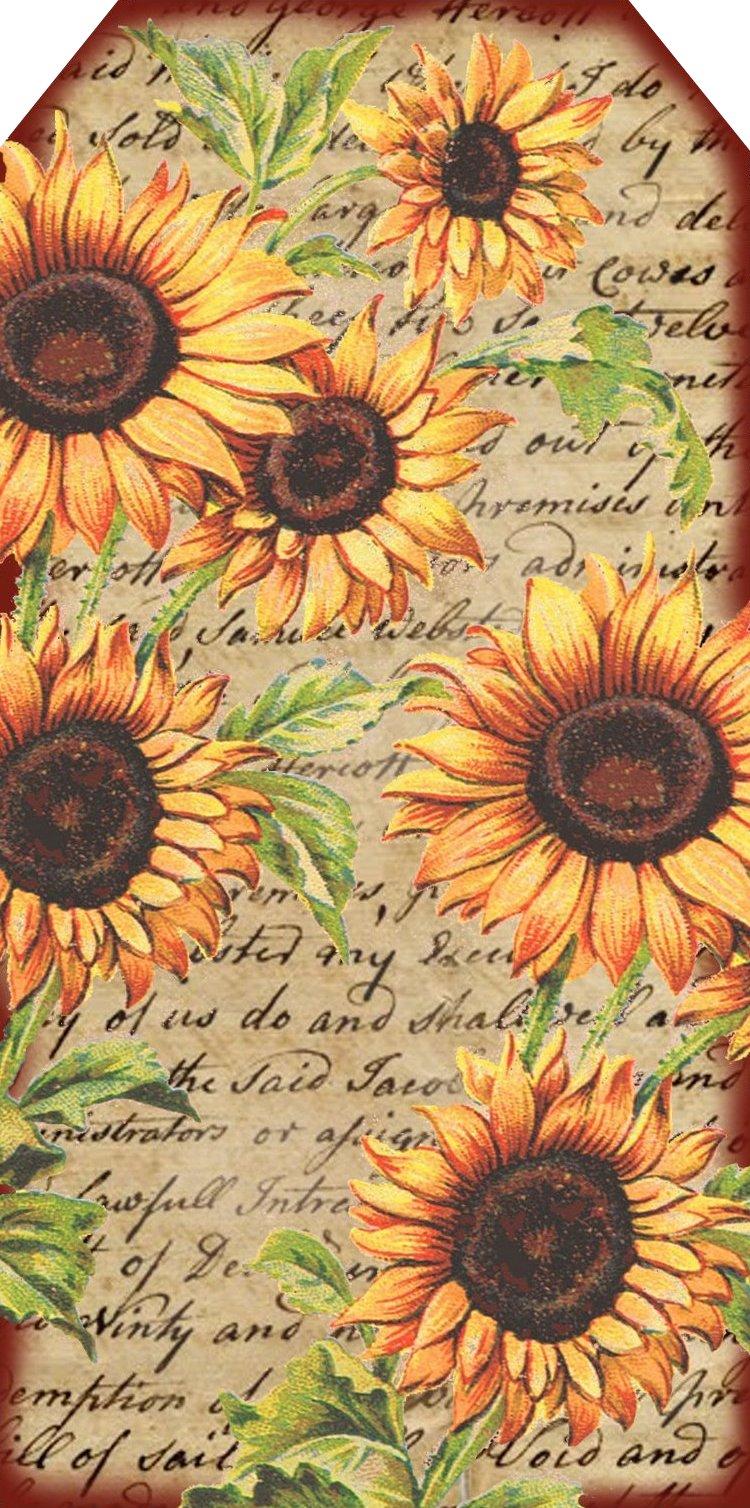 Lilac Amp Lavender Light Enchanted Sunflower