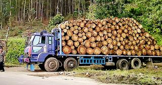 Pasar Faktor Produksi Alam