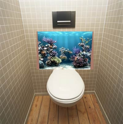 Swap Out The Toilet Tank For A Fish Add Filter To Hole At Bottom So You Dont Flush But Their Waste Can Easily Get Through