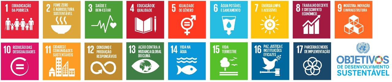 Nós Podemos Blumenau - Objetivos de Desenvolvimento do Milênio