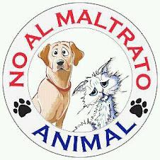 ¡¡NO AL MALTRATO ANIMAL, FISICO Y PSICOLÓGICO!!