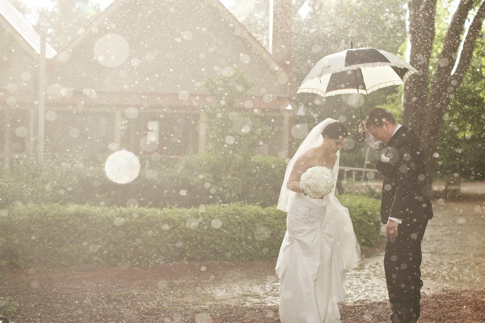 Что вытворяют на свадьбах фото 5 фотография