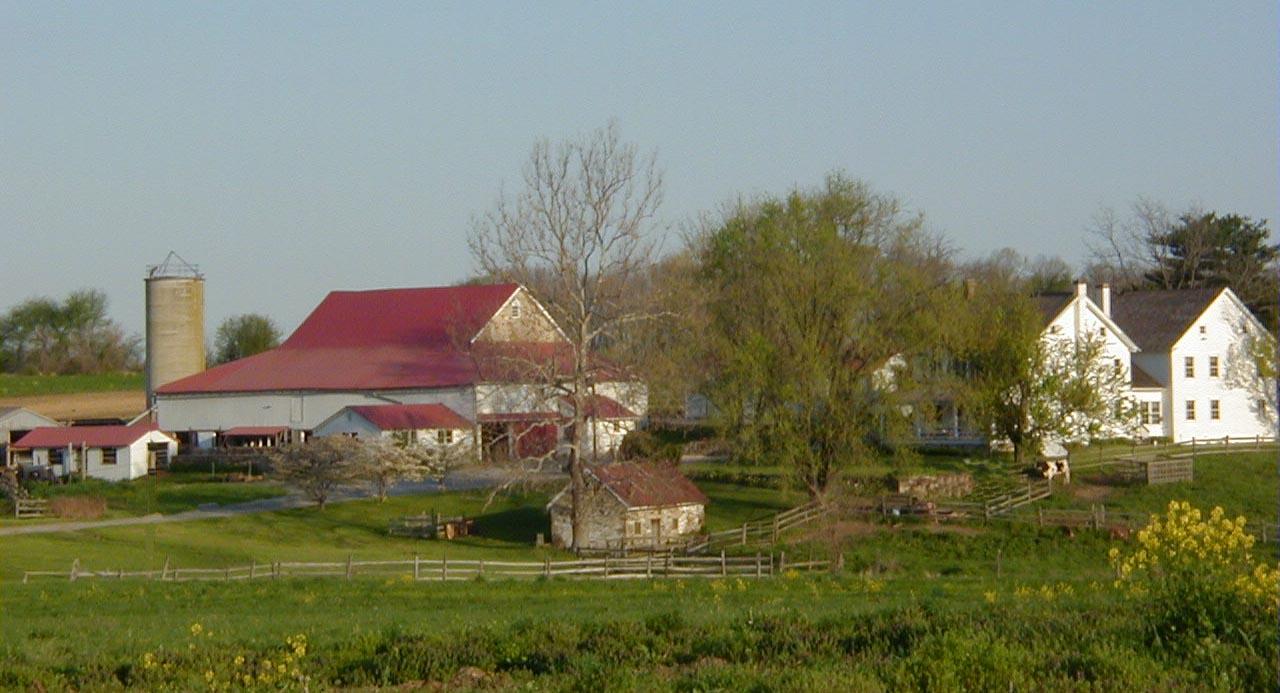 Selma Horn  farm