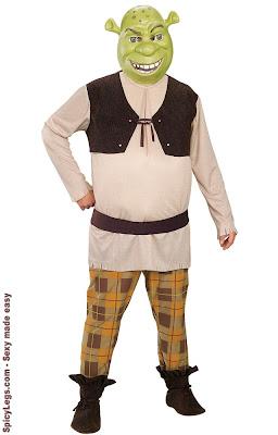 Shrek Deluxe Adult Costume Shrek Forever Fiona Warrior Adult Womens Costume