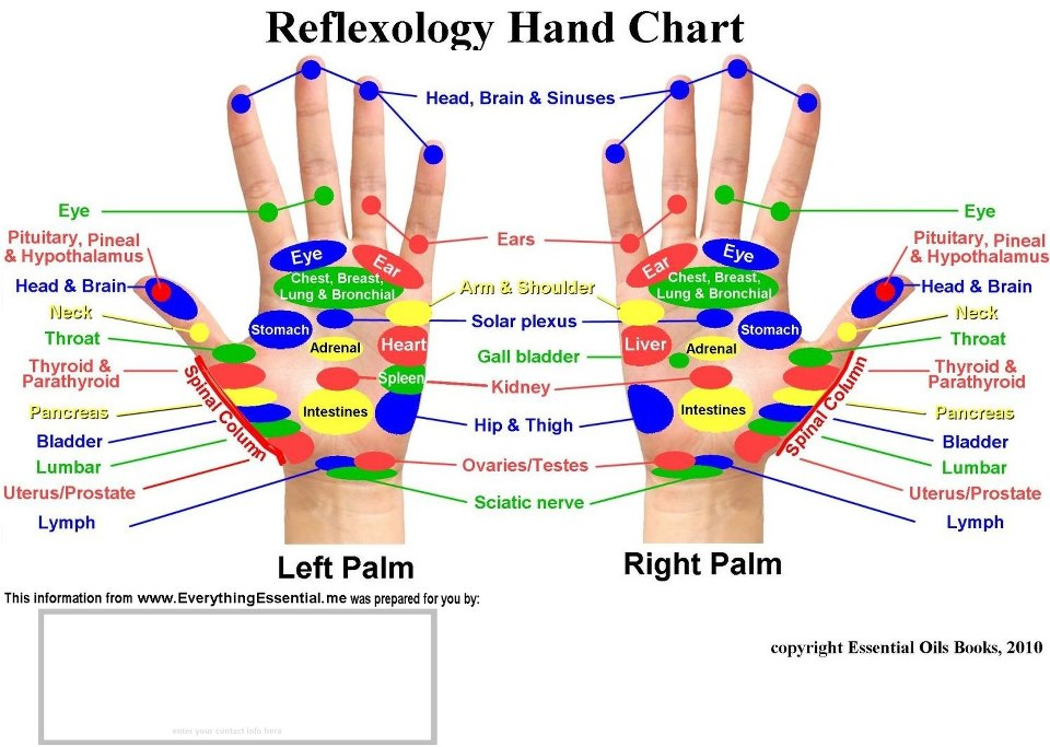 Hand Reflexology Pressure Points Chart on toyota wiring diagram