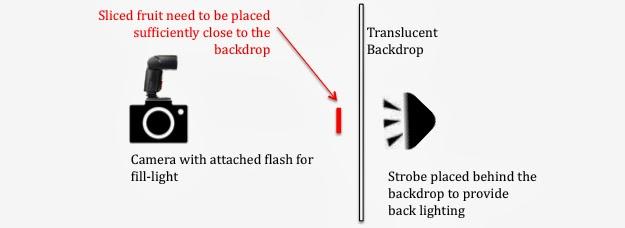 Illustration of Back Light Setup