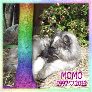 RIP MoMo
