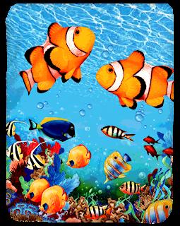 Selimut Kendra Coral Fish