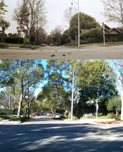 opening shot of haddonfield oxley st and montrose ave s pasadena ca 91030