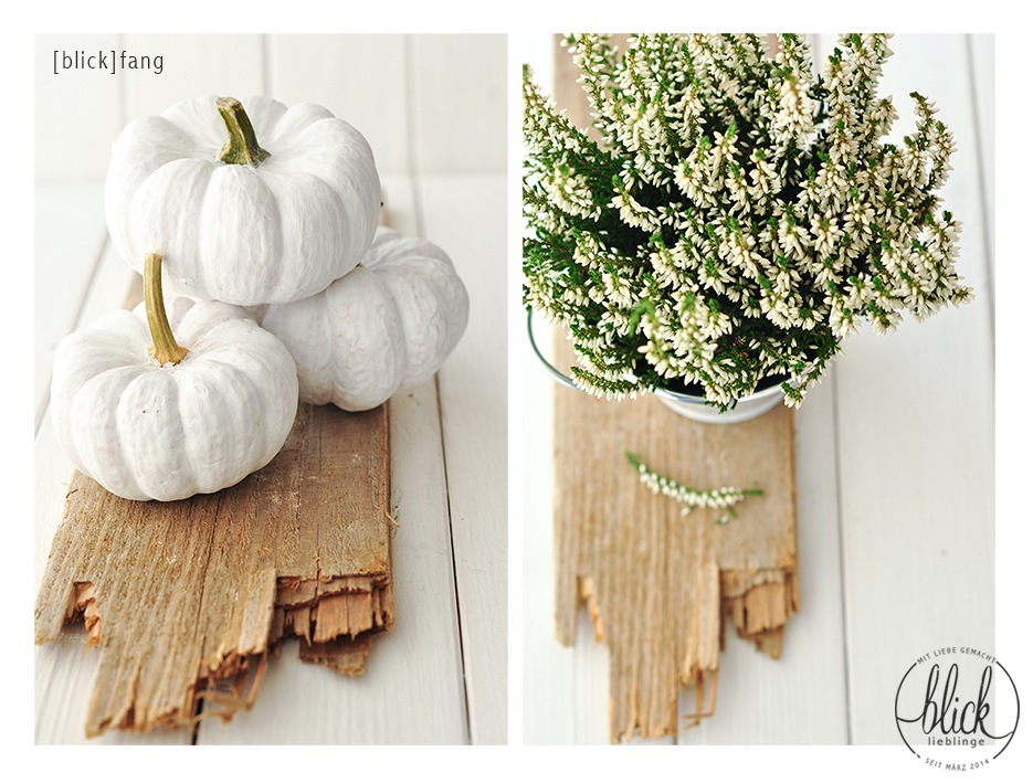 Wohnung Streichen Mit Baby : blick]lieblinge Herbstliche Dekoration  Weiße Kürbisse