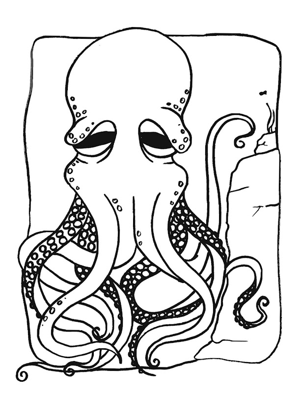 Octopus Drawing Coloring title=