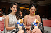 SIIMA 2014 press meet photos-thumbnail-9
