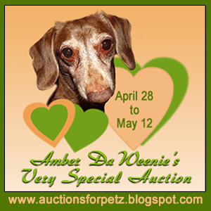 AMBER DA WEENIE AUCTION
