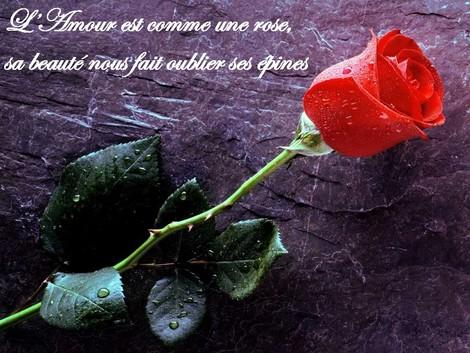 Gambar Foto puisi cinta romantis