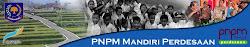 PNPM MP