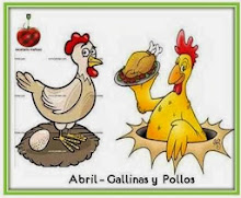 Abril 2014: Gallinas y Pollos
