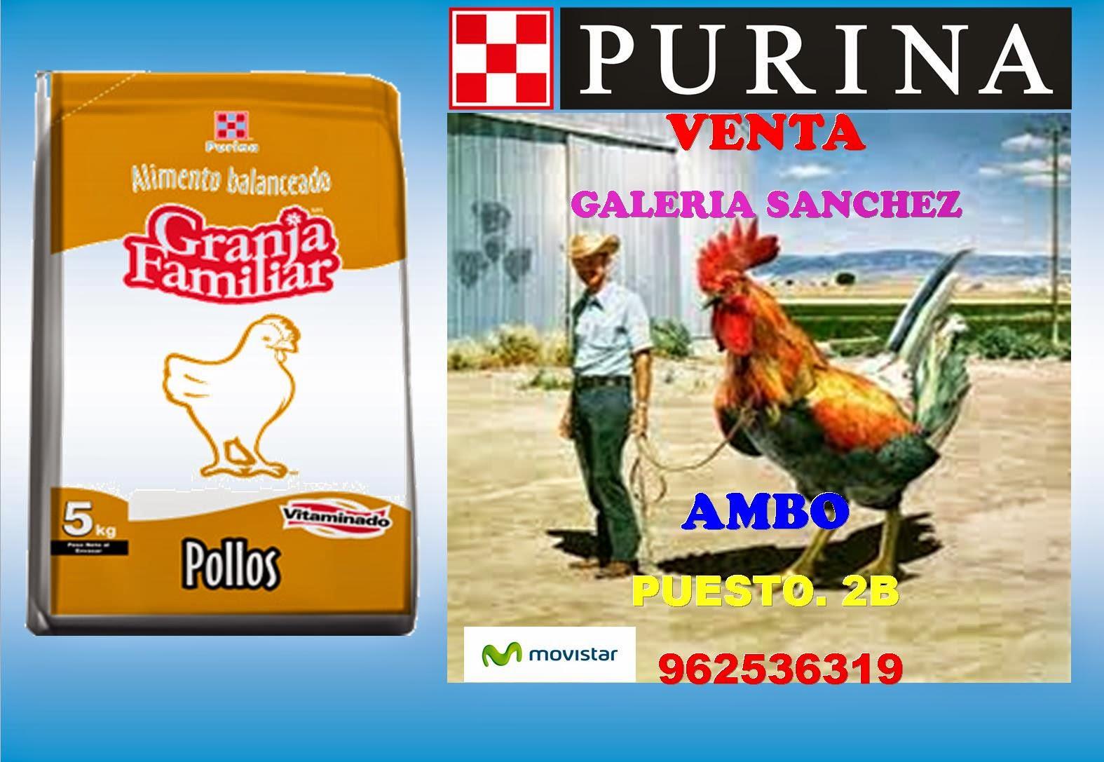 Presentacion distribuidor purina for Alimentos balanceados para truchas
