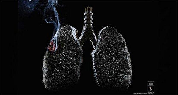 Bahaya Merokok Untuk Kesehatan