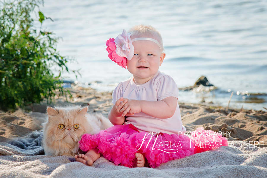 kass-beebitüdruk-rannatekk