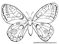 butterfly and insect coloring pages