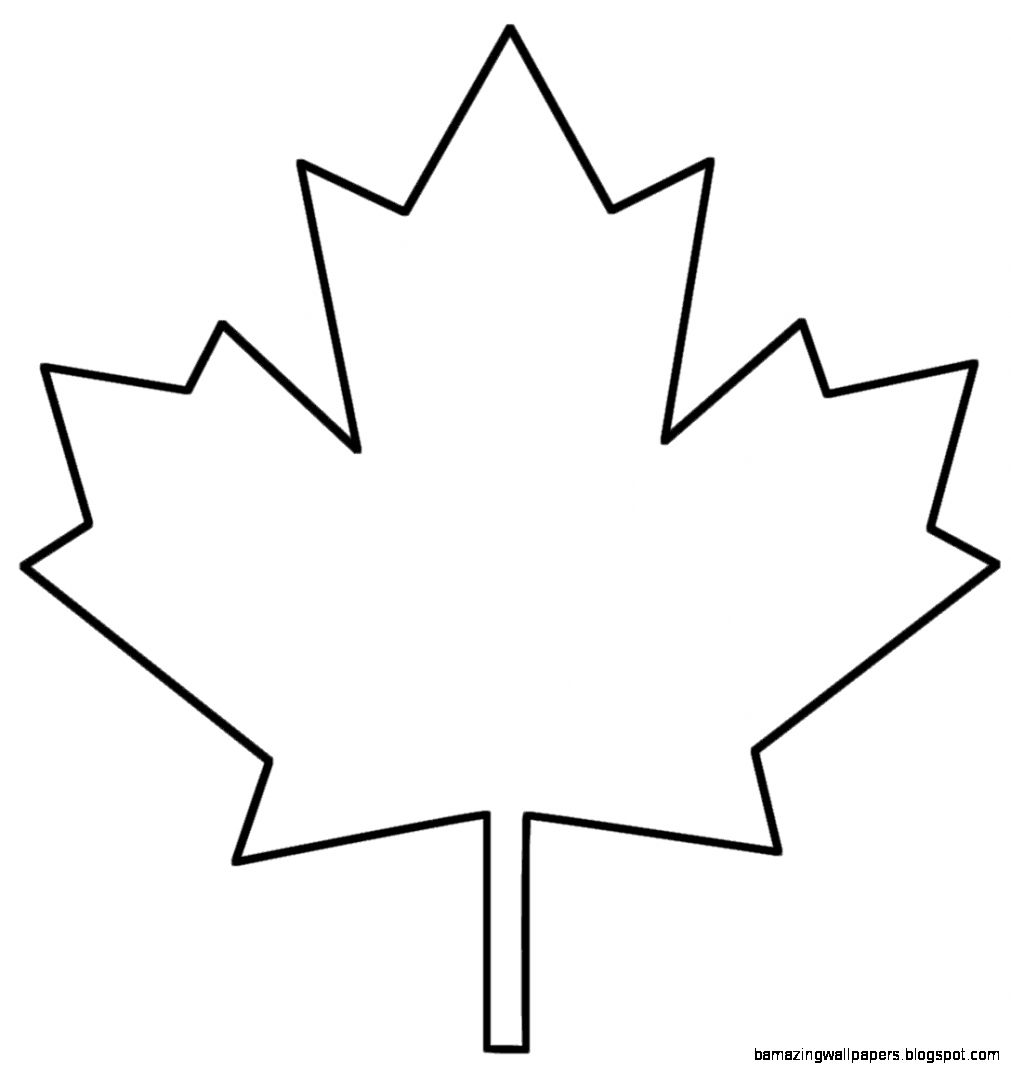 1000 images about Canada on Pinterest  Leaf template Maple