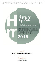IPA 2015 Honorable Mention