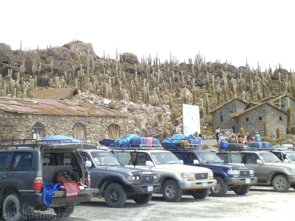 Isla del pescado, Uyuni, salar, isla