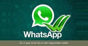 """Fugindo dos Novos """"Riscos Azuis"""" do What's App"""