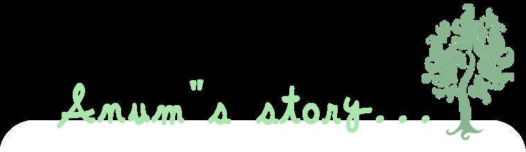 Anum's Storyy