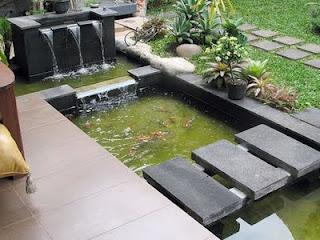 kolam air ikan relip tebing dll