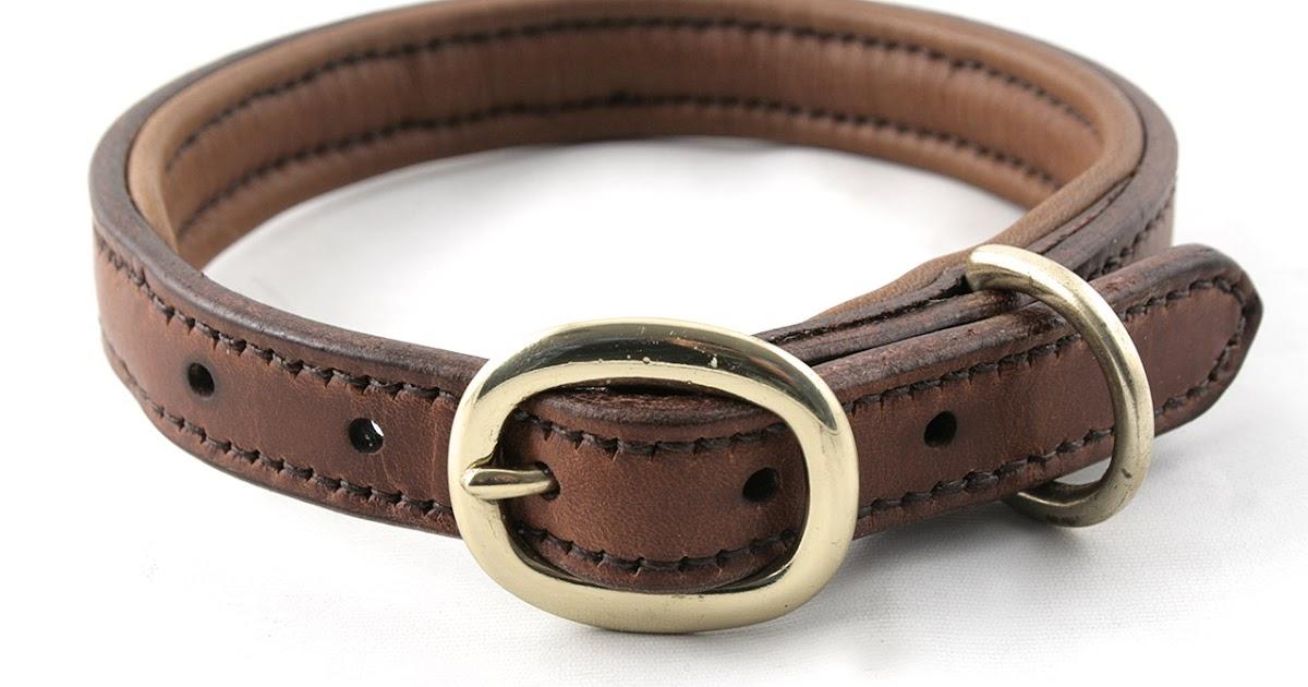 Wide Dog Collars Uk