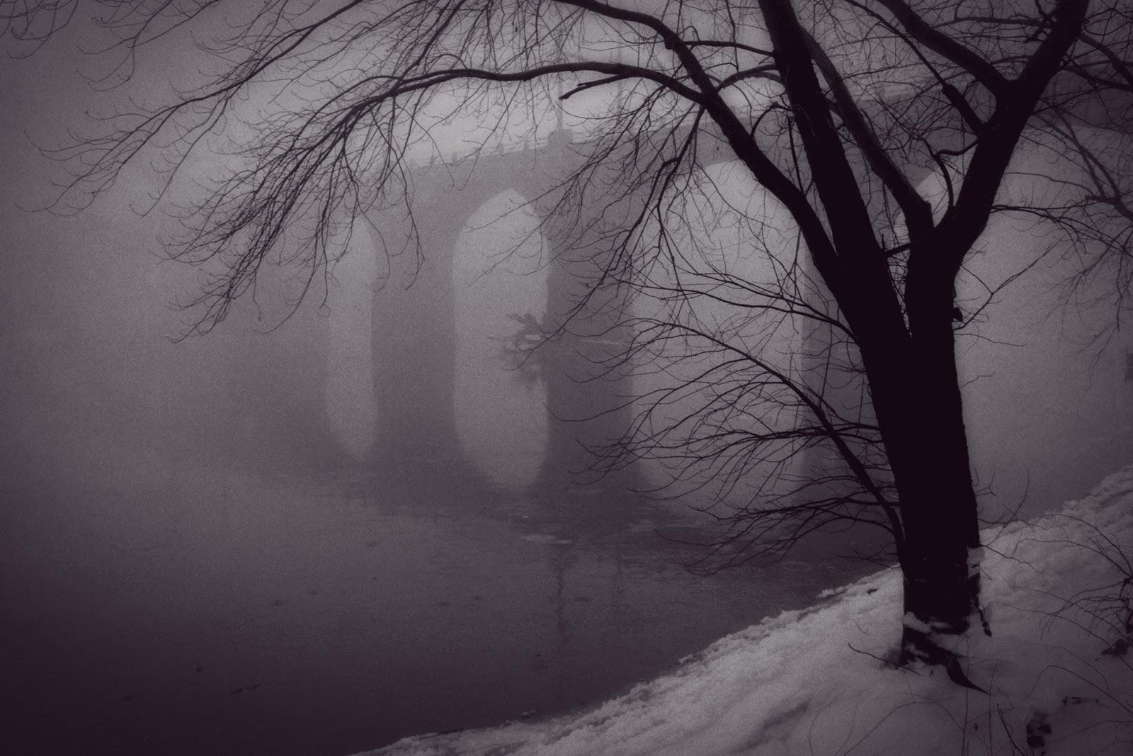 Josh friedman photography ice snow and fog black and white