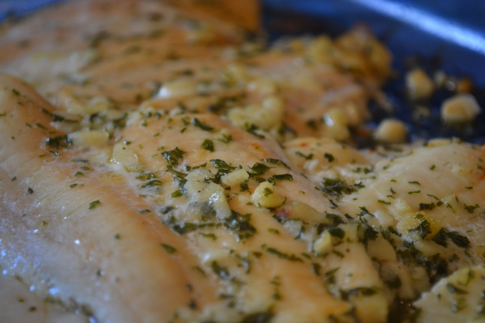 Garlic butter baked tilapia fillets for How to bake tilapia fish in the oven